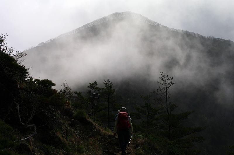 10幌満分岐から山頂.jpg