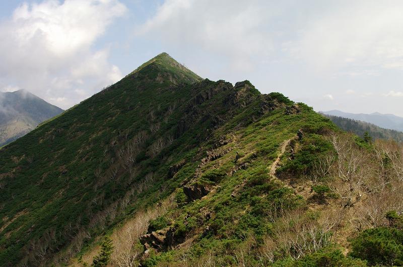 16吉田岳への稜線.jpg