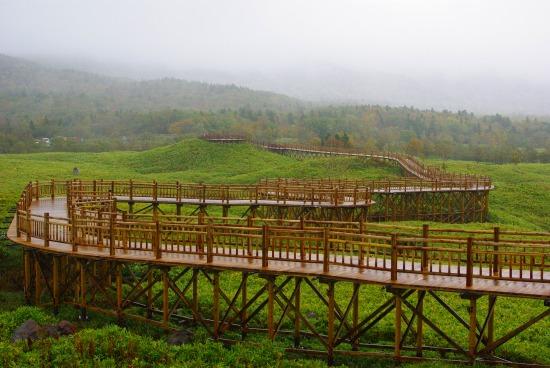 知床五湖の木道.jpg