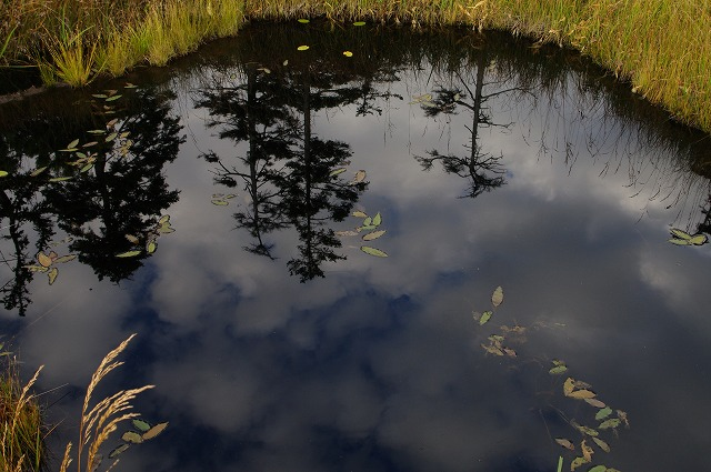 鏡の沼.jpg