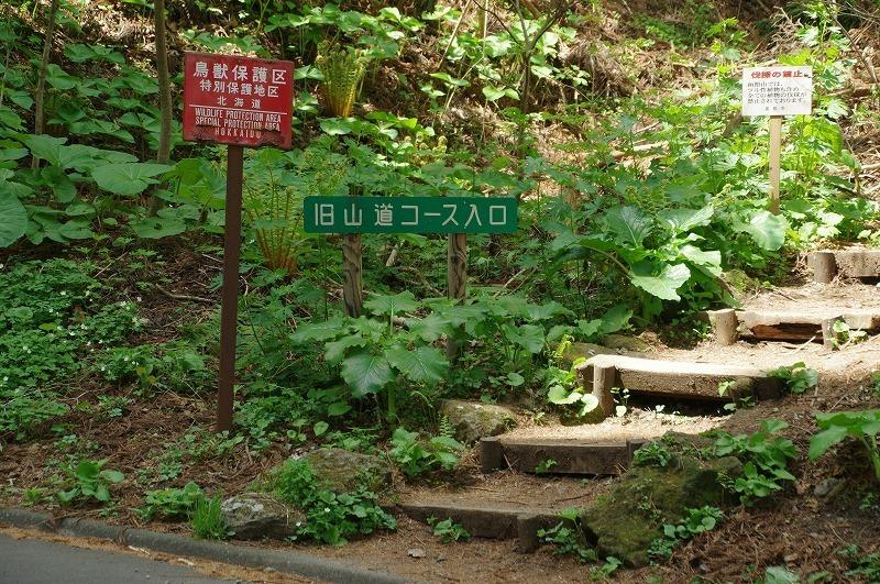 hakodateyama02.jpg