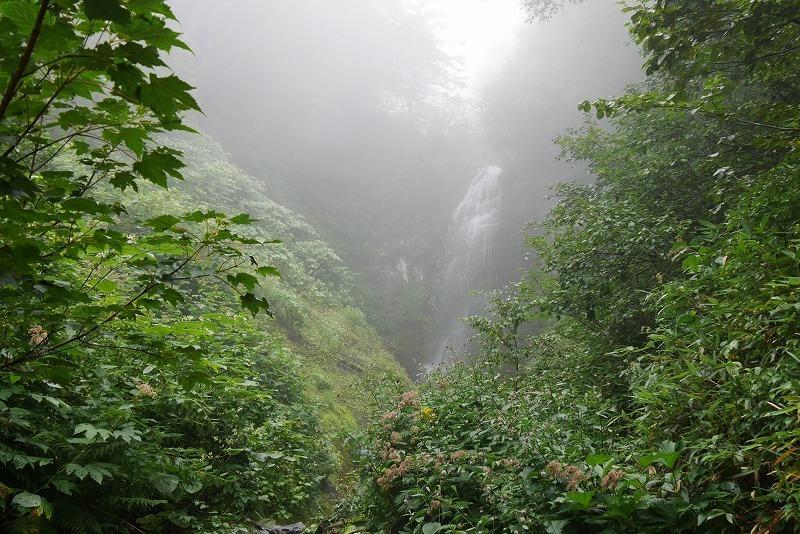 hirayama01.jpg